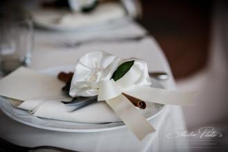 nicole_alessandro_wedding-151